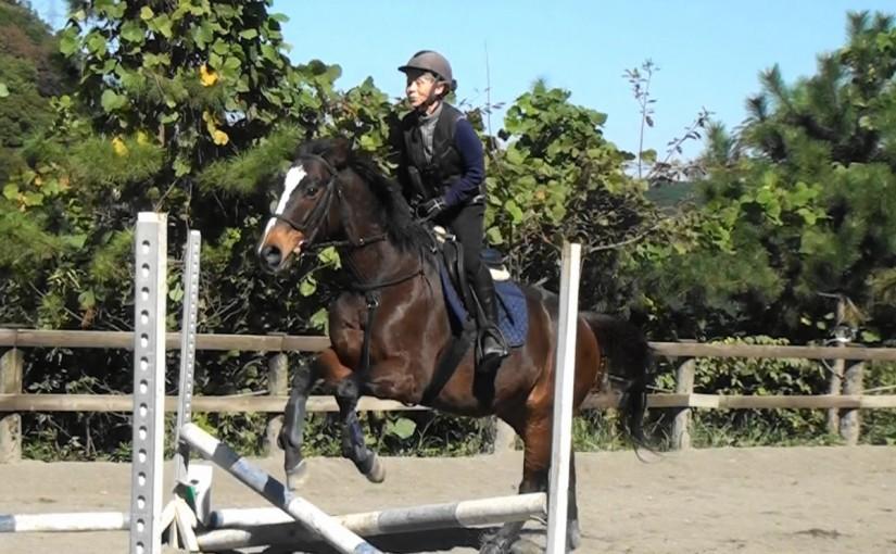秋の乗馬祭にてクロス障害を行いました。(東京都練馬区/T様)
