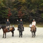 紅葉台木曽馬牧場に外乗に行って来ました。