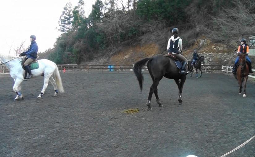 埼玉県の乗馬クラブ 初乗り新年会を行いました。