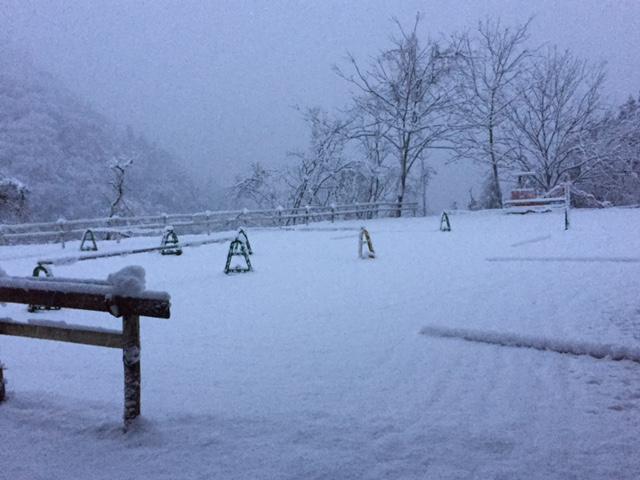 [越生の乗馬クラブ]除雪作業を行いました。