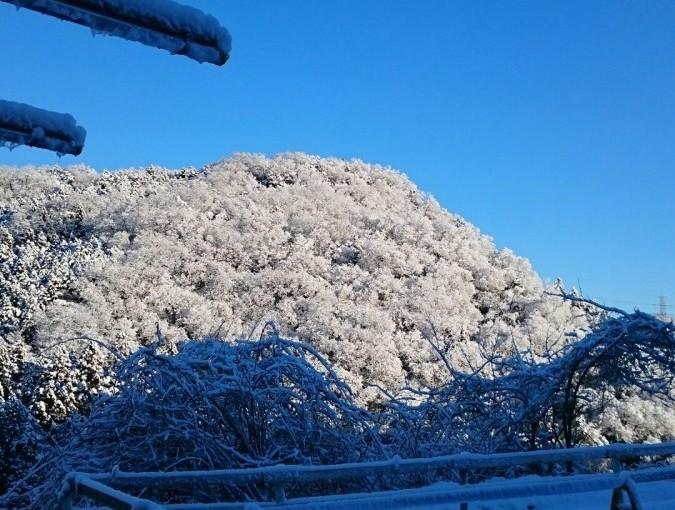 埼玉県の乗馬クラブ また雪が降りました