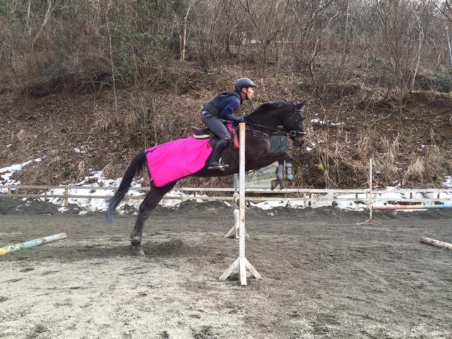 [越生の乗馬クラブ]90cm飛びました。!!(埼玉県熊谷市/M様)