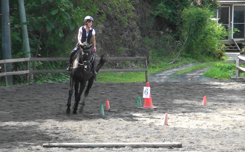 [越生の乗馬クラブ]経路走行会を行いました。