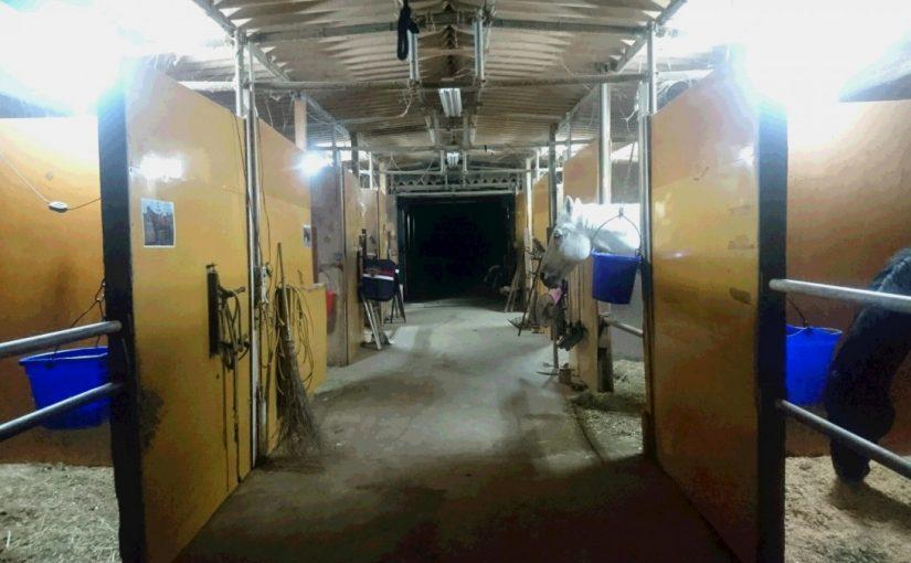 [越生の乗馬クラブ]初級JPレッスンにて経路練習を行いました。[神奈川県川崎市/S様]