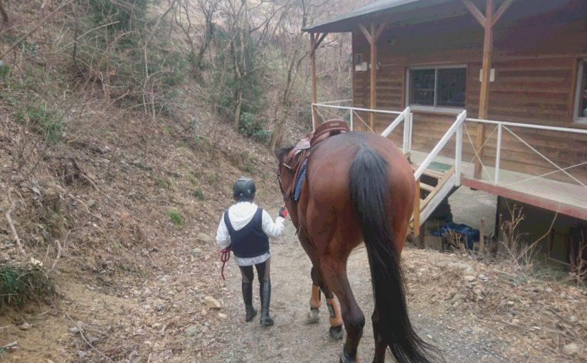 [越生の乗馬クラブ]緊張したけど初めての馬で経路回れた!![神奈川県川崎市/T様]