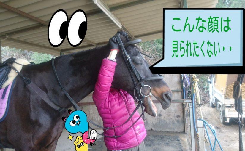 [越生の乗馬クラブ]こっちみないで~!?