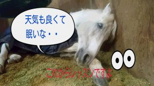 =_UTF-8_B_MTctMDMtMDktMTctMzUtMjctNDA0X2RlY28uanBn_=