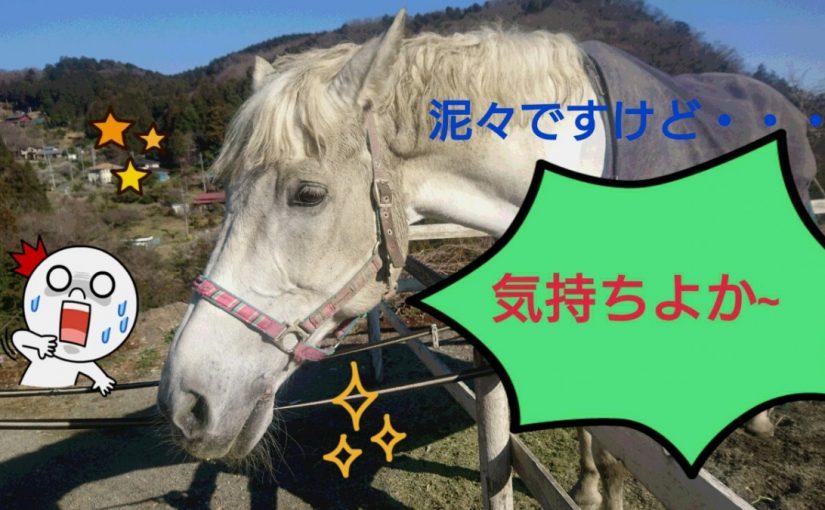 =_UTF-8_B_MTctMDMtMjQtMTYtNTYtMTMtODY3X2RlY28uanBn_=