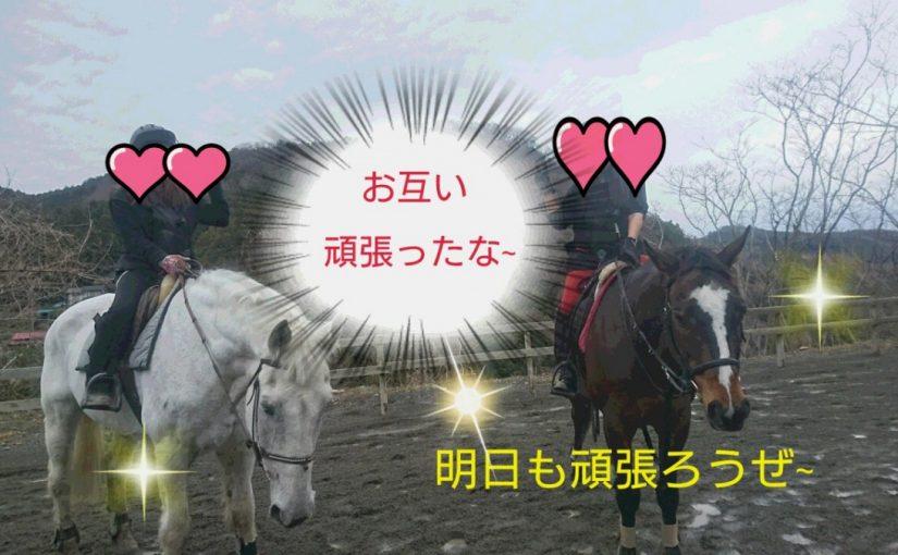 [越生の乗馬クラブ]久しぶりに馬に乗りました~!!
