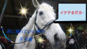 =_UTF-8_B_MTctMDQtMDktMTctMzItNTUtNTI0X2RlY28uanBn_=