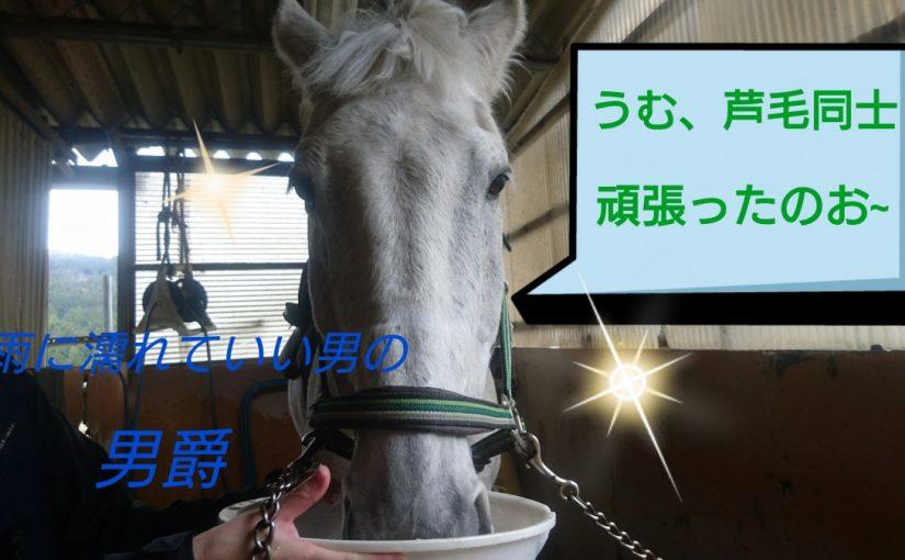 [越生の乗馬クラブ]雨に濡れてもいい男!!