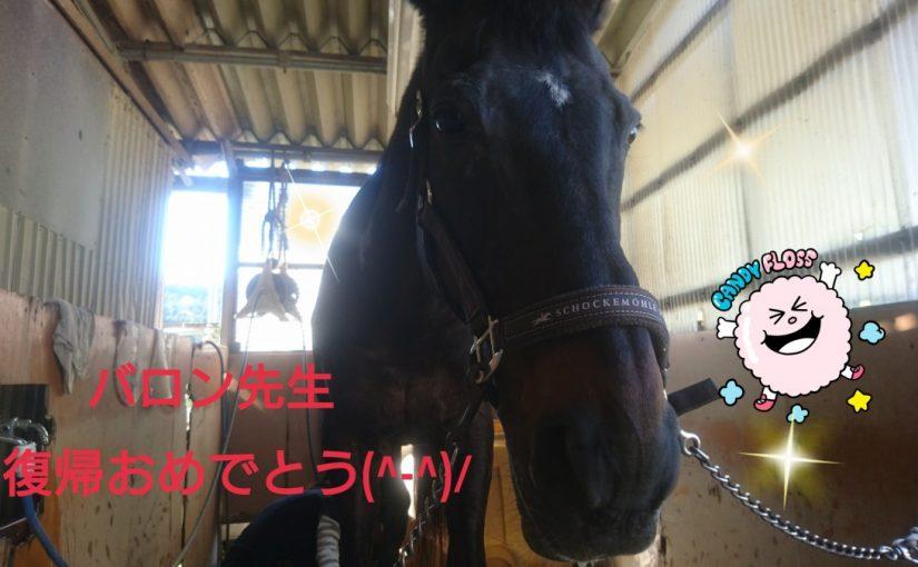 [越生の乗馬クラブ]復帰おめでとう!!