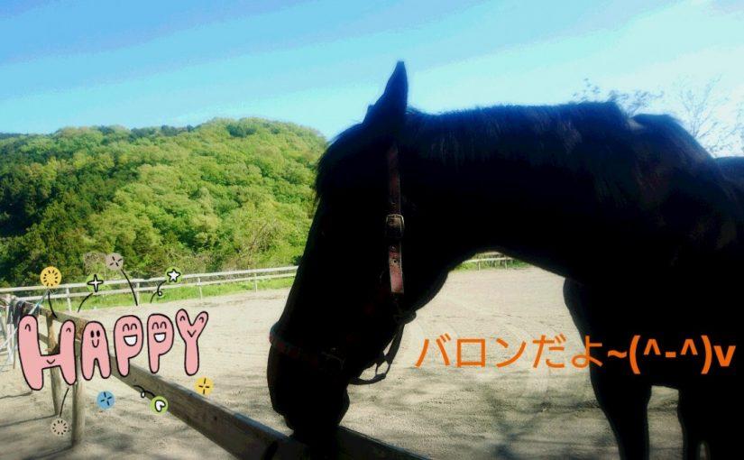 [越生の乗馬クラブ]一頭で放牧で伸び伸び~嬉しいな!!
