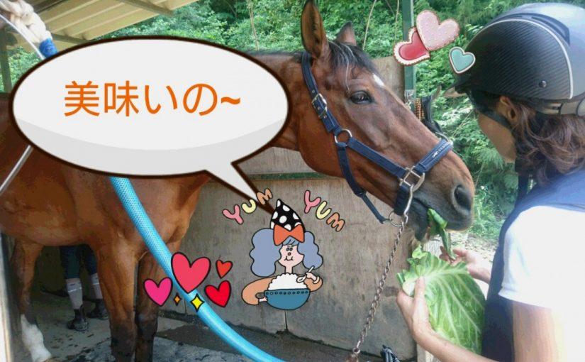 [越生の乗馬クラブ]レッスン頑張るぞ~!!