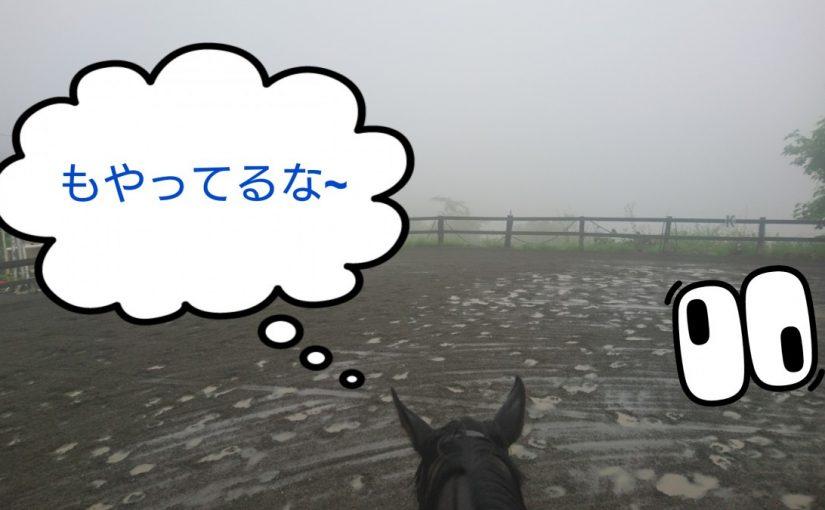 [越生の乗馬クラブ]靄の中幻想的な感じでした!!
