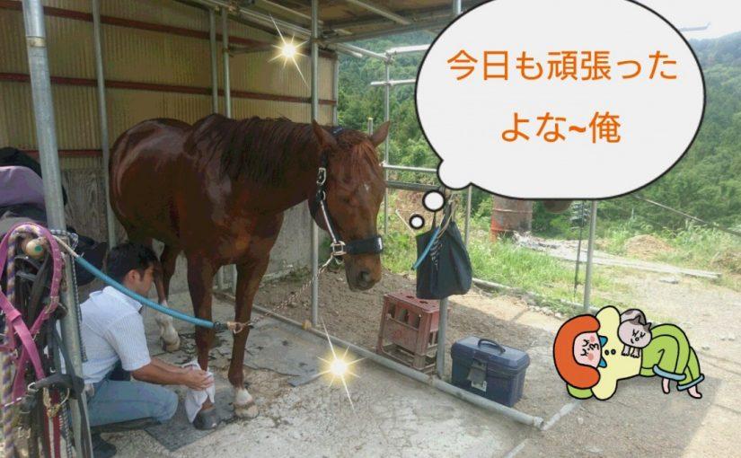 [越生の乗馬クラブ]今日もお疲れさまでした!!早くないまだお昼だよ!?