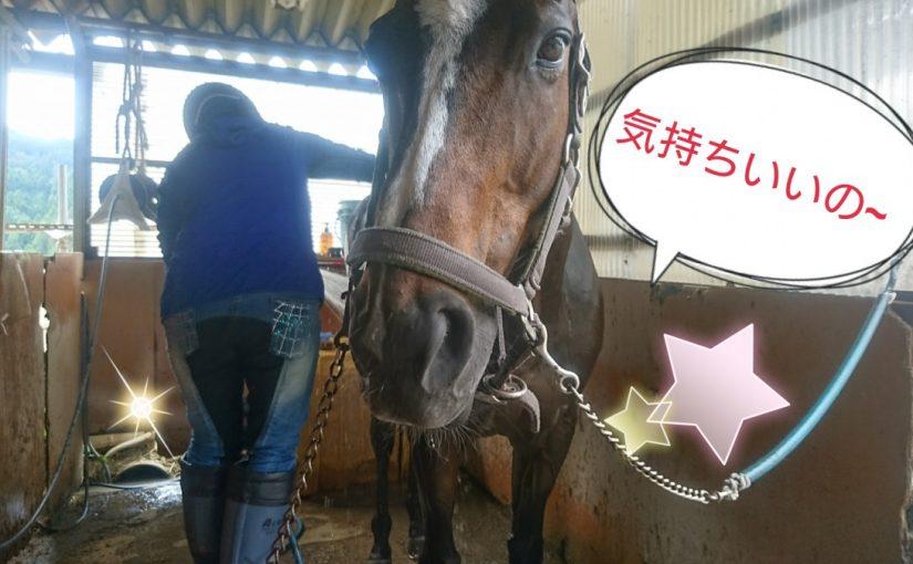 [越生の乗馬クラブ]気持ちよか~!!