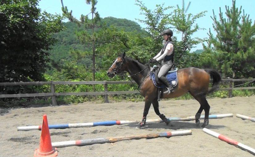 [越生の乗馬クラブ]経路走行会開催です!!