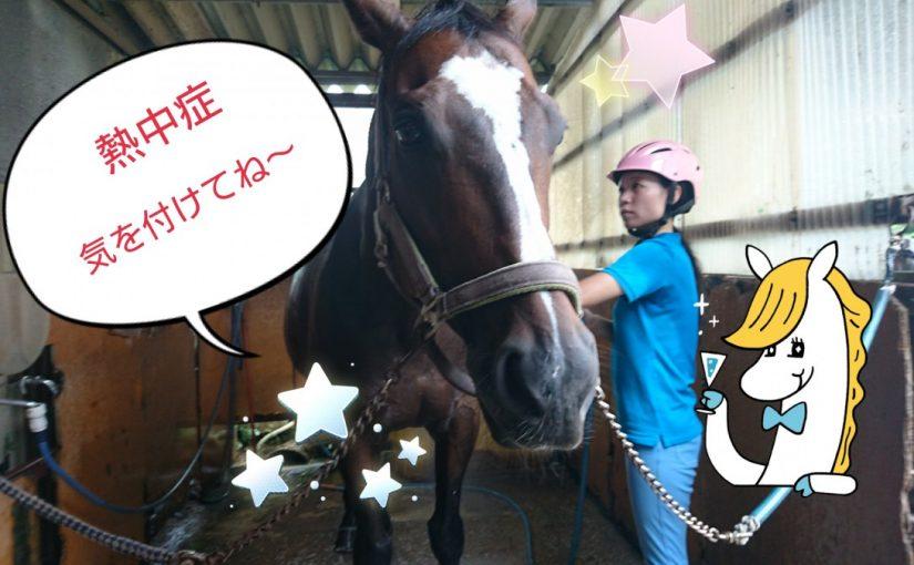 [越生の乗馬クラブ]熱中症に気を付けて~