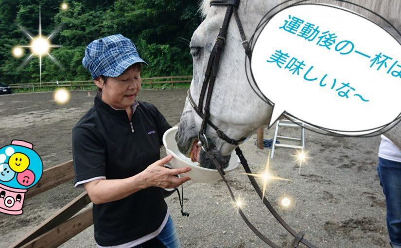 [越生の乗馬クラブ]水分と一緒に塩分補給~