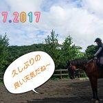 [越生の乗馬クラブ]久しぶりの晴れ間です!!