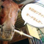 [越生の乗馬クラブ]リラックスしてま~す!!