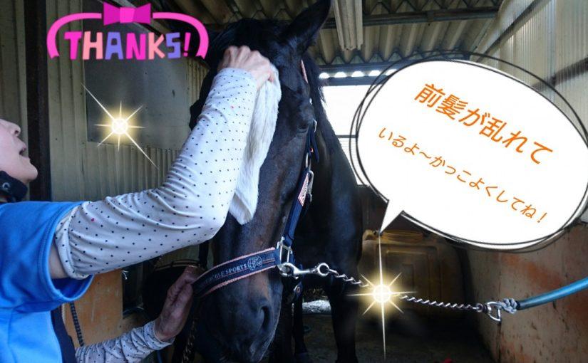 [越生の乗馬クラブ]かっこよくしてね~!!