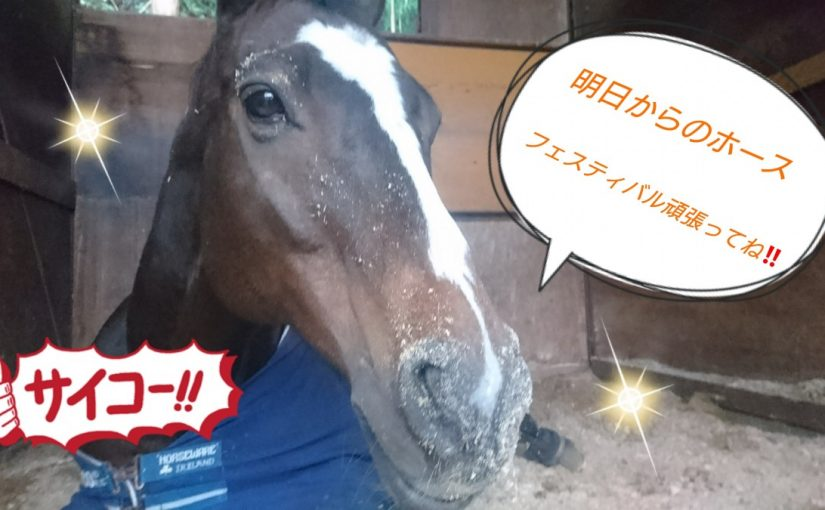 [越生の乗馬クラブ]楽しんでね~!!