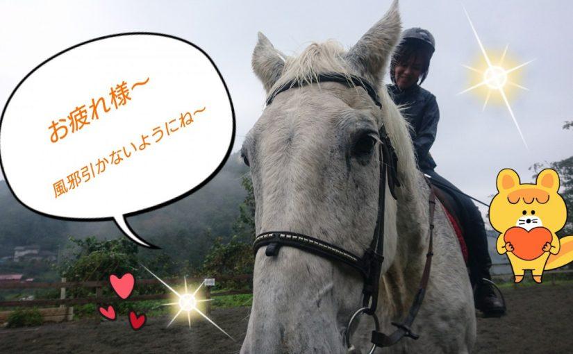 [越生の乗馬クラブ]何よりも先にジェイド君のケアを!!