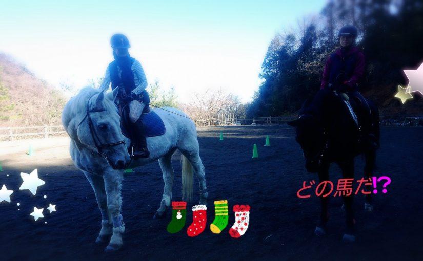 [越生の乗馬クラブ]左はジェイド君。右はどの馬だ!?