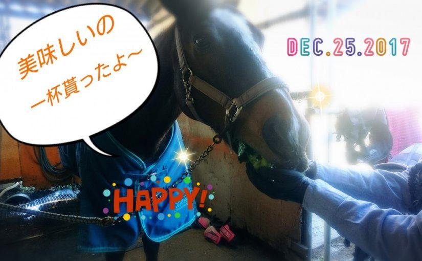 [越生の乗馬クラブ]クリスマスプレゼント貰ったよ~
