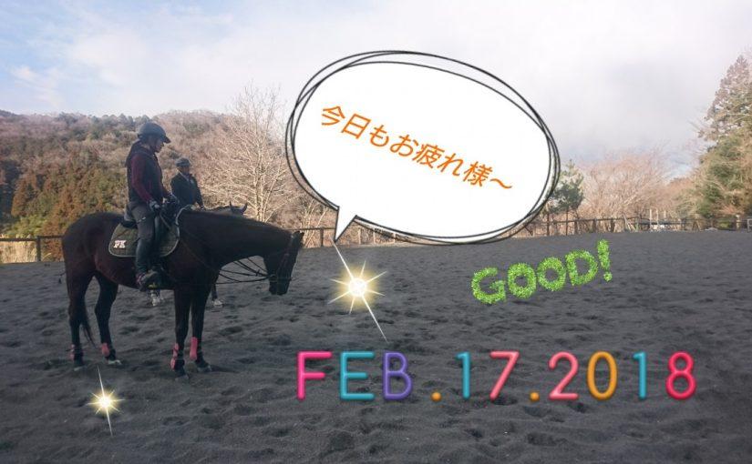 [越生の乗馬クラブ]春に向けて頑張ってます!