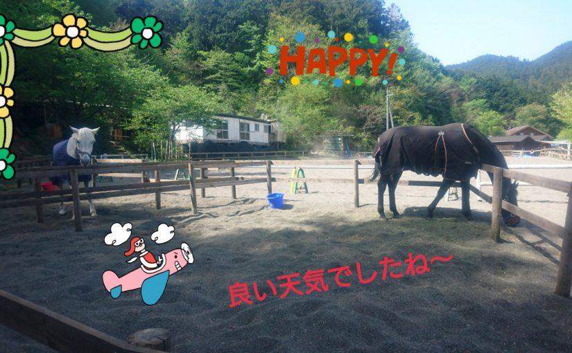 [越生の乗馬クラブ]良い天気でしたね~